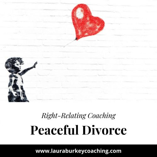 Peaceful Divorce 6 Session Mediation/Coaching